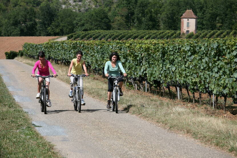 A vélo dans le vignoble de Cahors Lot Tourisme - J. Morel